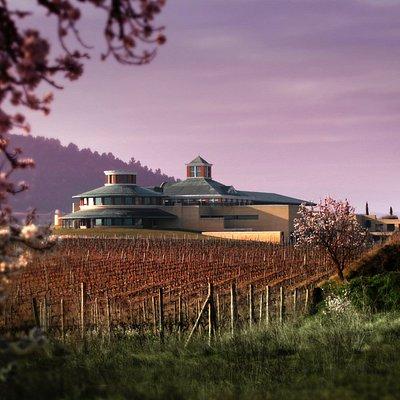 Vivanco. Cultura de Vino