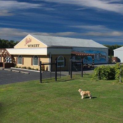 Balić Winery & Vineyards Route 40 (6623 Harding Hwy) Mays Landing, NJ 08330