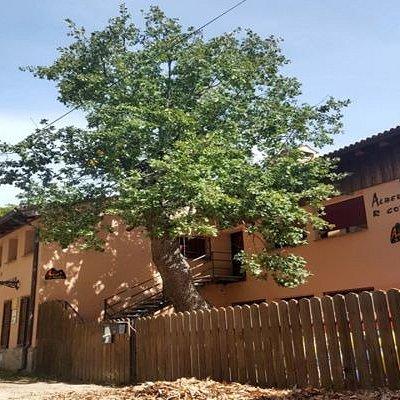 Vista exterior del alojamiento. Fachada principal