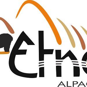 Logo Etno Alpaca
