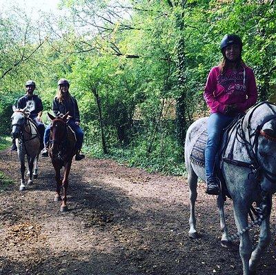 A private horse ride