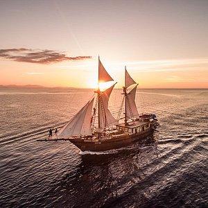 Cruising Komodo (Luxury Charter)