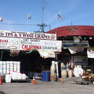 Wine Grapes shop