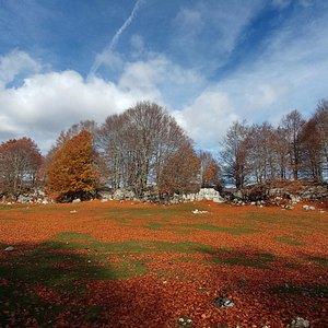 Parco Monti Simbruini...