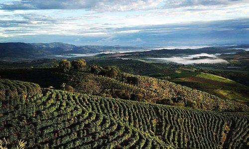 Vista aérea da Fazenda Sertão