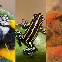 Centro Urku: Es posible para las sociedades vivir en armonia con la naturaleza.
