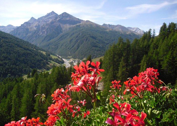 Vista da Allevè della Val Troncea