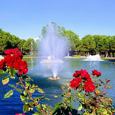 Harika bir Şehir Parkı