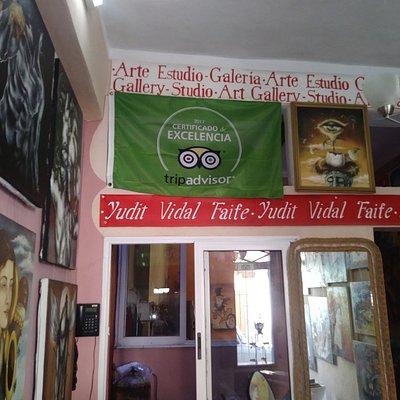 Bandera Certificado de Excelencia a Yudit Vidal Faife/Gallery