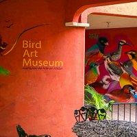 Bird Art Museum / AviMuseo de Arte de Atitlan