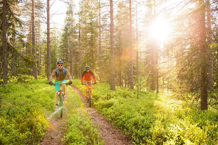 Runt om i skogarna kring Mora finns det många fina stigar för MTB cykling.