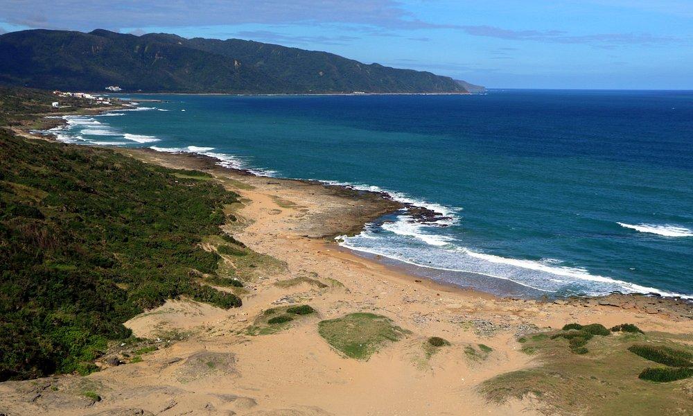 太平洋海景