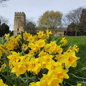 Saxon Church in Spring