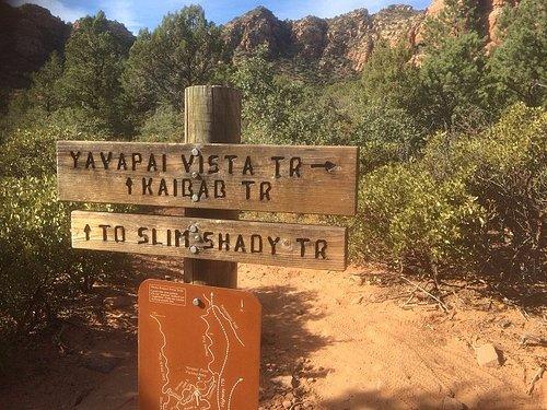 The Trail Sign Near The Car Park