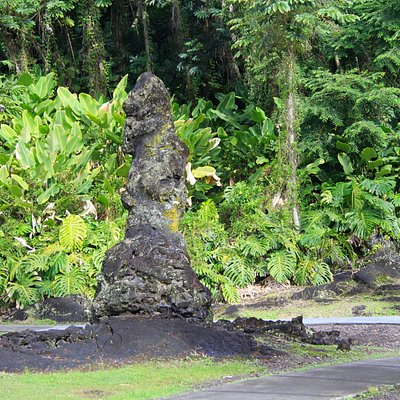 Examples of Lava Trees
