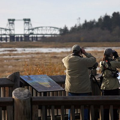 The Ni-les'tun unit of Bandon Marsh is a great place for birding!