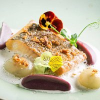 GASTRONOMIC SET FROM CHEF.Smoked chir with red cabbage puree, mussel sauce and yellow violet pet
