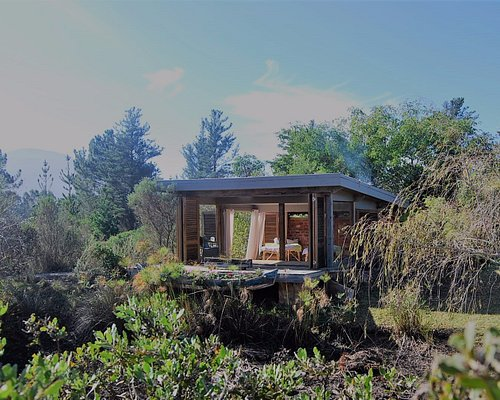 Massage Room surrounded by nature