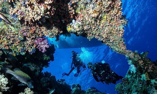 Palau diving, breath taking.