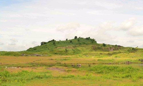 SAS hill, Kangaroo pad