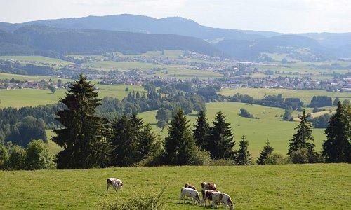 Paysages du Haut-Doubs près de Morteau