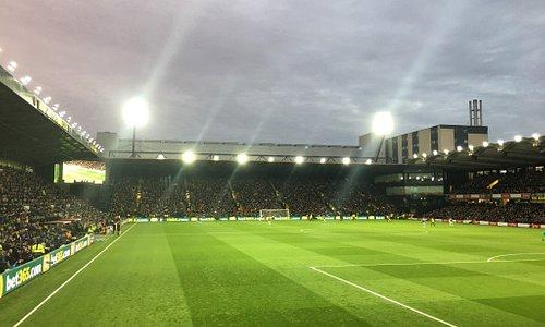 Handyman Watford FC