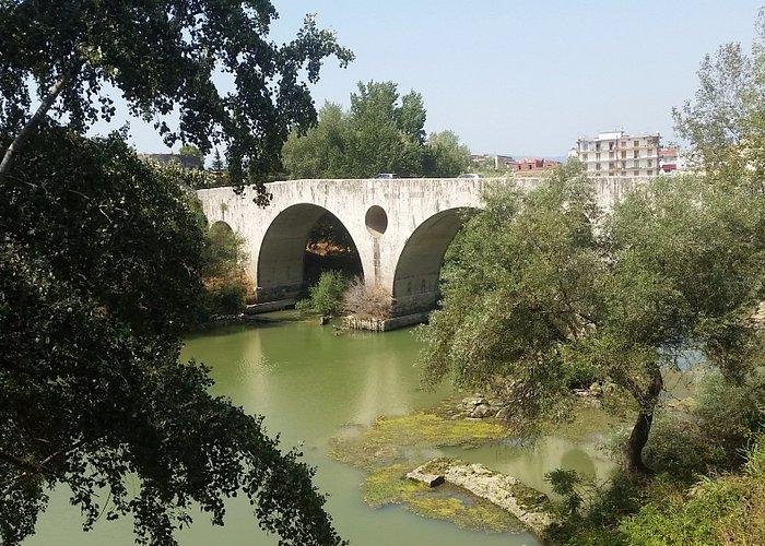 ponte romano tra le frasche