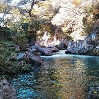 渓谷の川と紅葉