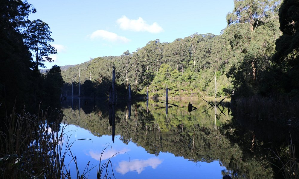 Lake Elizabeth - picturesque walk to drowned lake