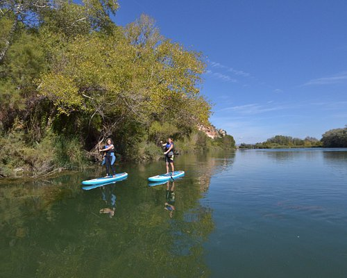 Paddleboard excursions