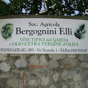 Societa Agricola Bergognini Fratelli