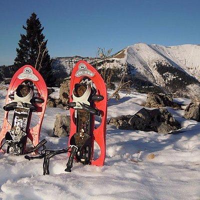 Snowshoeing adventure!