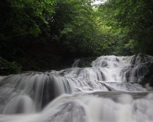 魚止めの滝:全景