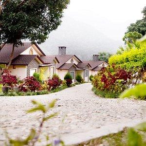 The Premia Villa