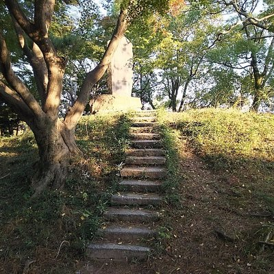 南殿庭園の築山にあたる「秋の山」