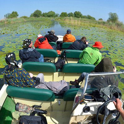 Discover Danube Delta with us, on safe open boats and the best guide's team