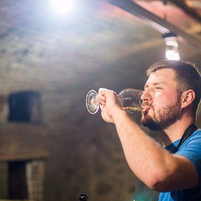 Wine tasting full of experience