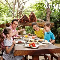 Experience our award-winning Jungle Breakfast with Wildlife at the Ah Meng Restaurant