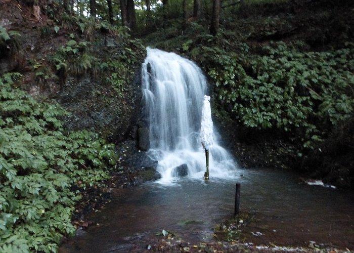 神社の鐘楼堂前の225段の階段を降りて行くと那智の滝が現れる。昔は修験者などがここで滝に打たれる修行をしたという。