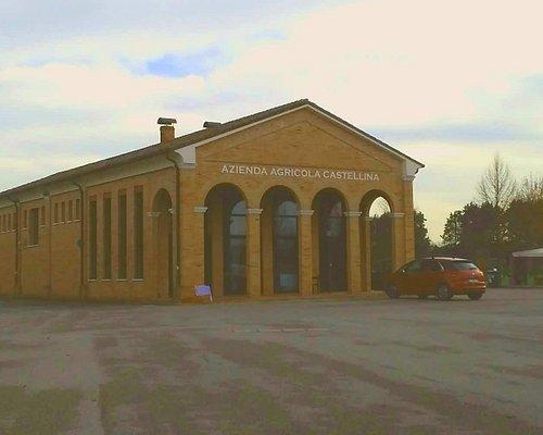 Azienda Castellina dicembre 2017