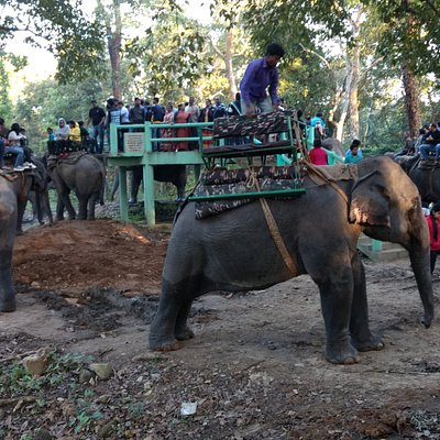 Elevated structure (machan) for people to sit on the elephant