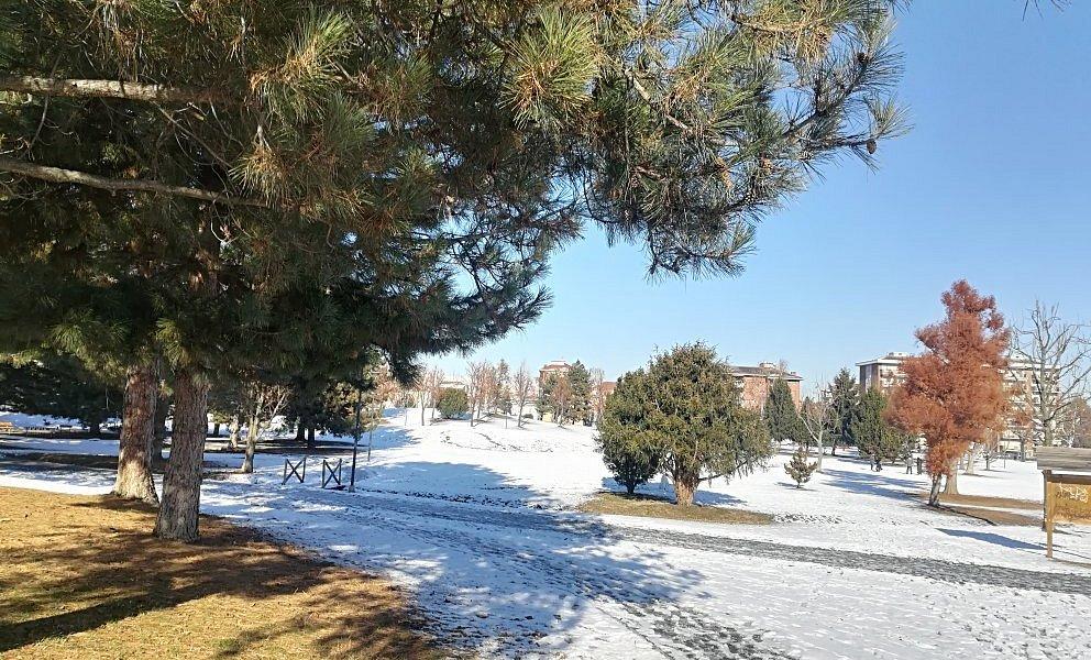 La prima neve nel parco