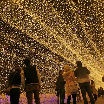 mesmerizing light illumination