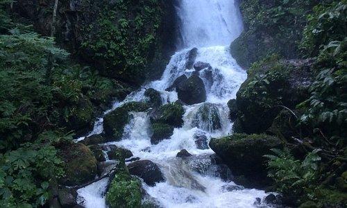 しぶきと風を浴びながら / Being splashed and feeling wind from the fall