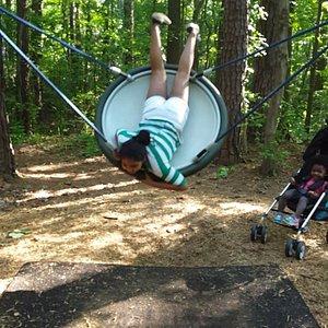 Bungee Saucer Swing