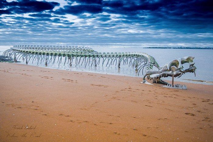 Le serpent de l'apocalypse de Saint Brévin l'océan, œuvre de l'artiste Huang Yong Ping.