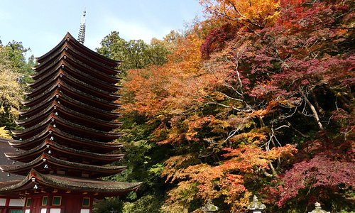 13 story pagoda with autumn leaves