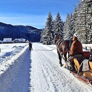Sleigh ride in the Tatra National Park - Zakopane - Poland