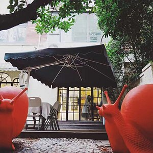 Je Artspace, Look out for their cute snails!