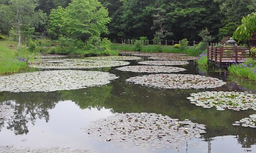 Asahiyama Miura Garden